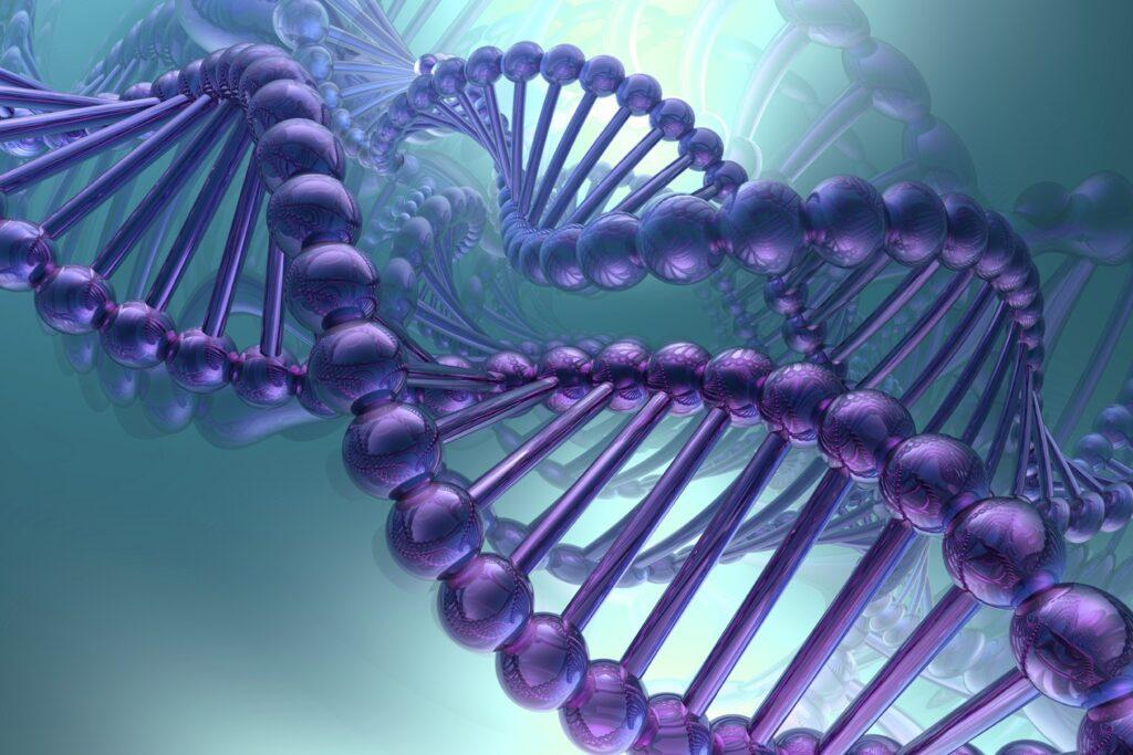 Гены инфаркта и инсульта можно «перезаписать»